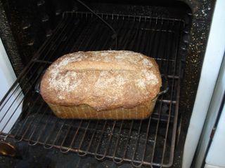 Resized_bread