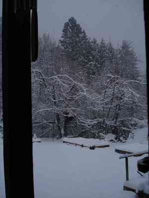 Resized_snowday_007