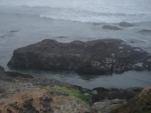 Resized_ocean_018