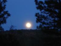 Moon_003_1