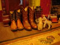 Resized_boots_002